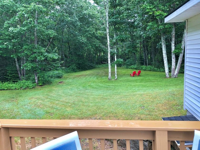 deck yard 2